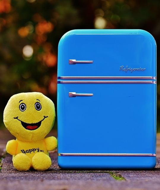 À quoi sert un mini frigo ?